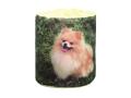 トイレットペーパー 販促用 仔犬 ポメラニアン ダブル30m 個包装100個