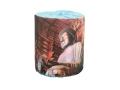 販促用トイレットペーパー 日本の世界遺産 東大寺 個包装100個 ダブル30m