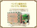 トイレットペーパー 丸富製紙 緑茶の力プレミアム 3枚重ね20m 12ロールX4パック