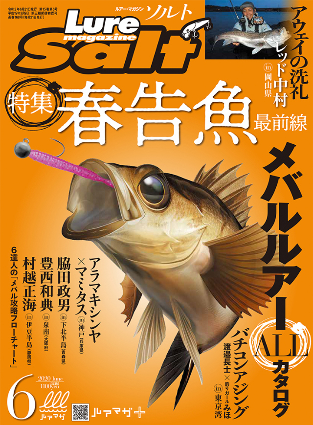 ルアーマガジン・ソルト 2020年6月号(4/21発売)
