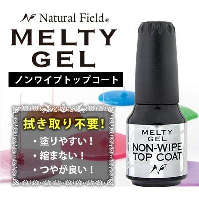 【NFS】 MELTY GEL ノンワイプトップコート 14g