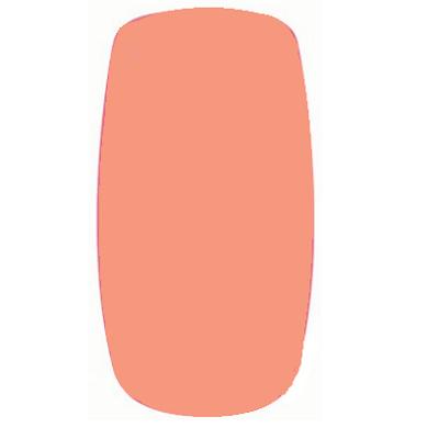 【Calgel】 カラージェル 4g ナチュラルベージュ <マット> 【検定】