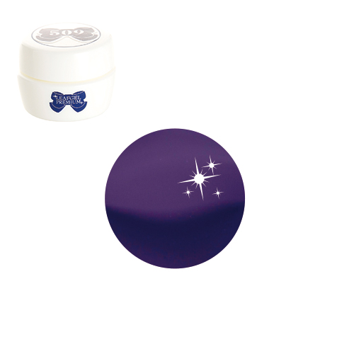 【LEAFGEL PREMIUM】 カラージェル 025 M   トロピーク・ヴィオレ (マット) 4g