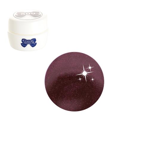 【LEAFGEL PREMIUM】 カラージェル 049 P   ローズ・ヴァンピーヌ (パール) 4g