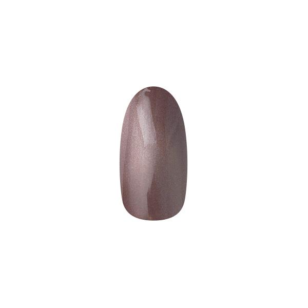 【取寄】【NAIL PARFAIT】 マグネットカラー 2g  S12 エマンマロン