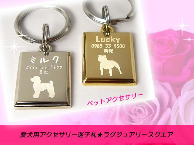 L-dog-ES1826-TOP