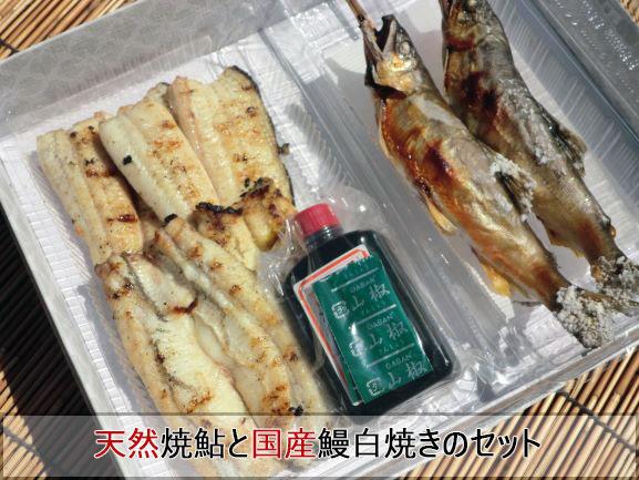 天然鮎は大きさ、塩焼き、素焼きご選択頂けます【炭火焼き天然焼鮎と国産鰻白焼き(山椒タレ付属)のセット】