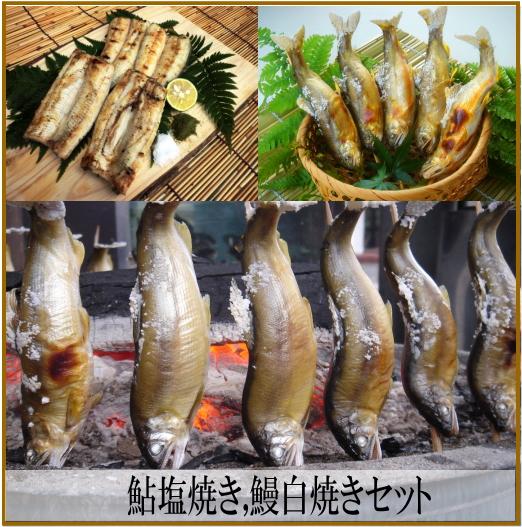 焼鮎・国産鰻白焼きセット(タレ山椒付属)各2尾~※焼鮎は塩焼き素焼きご選択頂けます