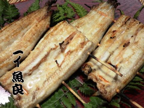 お店で活魚を捌き炭火で丁寧に焼き上げています!国産鰻串白焼き(タレ,山椒付属)
