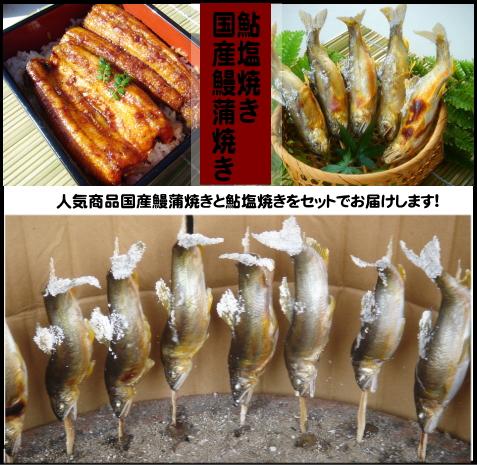 焼鮎・国産鰻蒲焼き(タレ山椒付属)セット2尾入~簡易包装※鮎は塩焼きor素焼きご選択頂けます