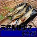 天然鮎ツウに人気!那珂川の恵みを丸ごと味わえます!一度食べたらクセになります!【天然鮎塩焼き小サイズ】5尾入〜