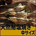 濃厚な味と香り、一度食べたら忘れられない味わい!【天然鮎塩焼き中サイズ】5尾,入〜