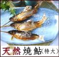 濃厚な味と香り、一度食べたら忘れられない味わい!【天然焼鮎特大サイズ】5尾入~※天然鮎塩焼きor天然鮎素焼きご選択頂けます