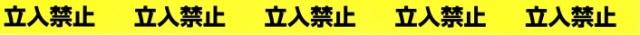 ラインテープE-SDP 50mmx10m 【立入禁止】
