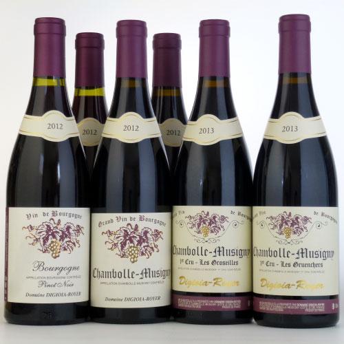 ディジオイア・ロワイエ 赤ワイン 750ml 6本セット フランス ブルゴーニュ