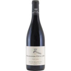 ブルゴーニュ コート・ドール・ルージュ 2017 アンリ・マニャン フランス ブルゴーニュ 赤ワイン 750ml