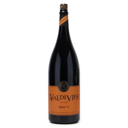 バルディビエソ ブリュット ダブル・マグナム ヴィーニャ・バルディビエソ チリ セントラルバレー 白ワイン 3000ml
