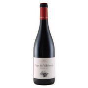 パゴ・デ・バルドネヘ ホベン 2017 ビノス・パルトゥイ―ジェ スペイン ビエルソ 赤ワイン 750ml