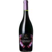 ヴィーノ ノヴェッロ 2021 ヴェレノージ イタリア マルケ 新酒赤ワイン 750ml