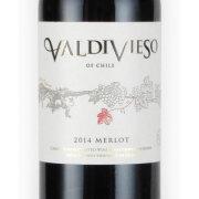 メルロ 2013 ヴィーニャ・バルディビエソ チリ セトラルバレー 赤ワイン 750ml