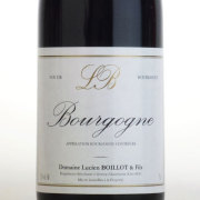 ブルゴーニュ・ルージュ 2012 ドメーヌ・ルシアン・ボワイヨ・エ・フィス フランス ブルゴーニュ 赤ワイン 750ml
