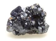 赤銅鉱 八面体結晶 01 メイン
