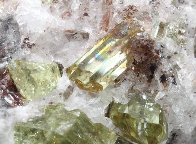 弗素燐灰石(Fluorapatite)母岩付き メキシコ Cerro de Mercado鉱山産