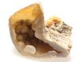 メノウ化した珊瑚化石 01 メイン
