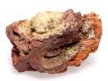 アダム鉱 母岩付き Ojuela鉱山 01 メイン