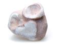貝オパール 母岩付き 01 メイン