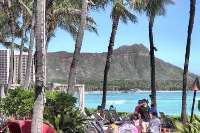 ハワイフェス・ライブ中継チケット「Power of Joy in Hawaii 2020」