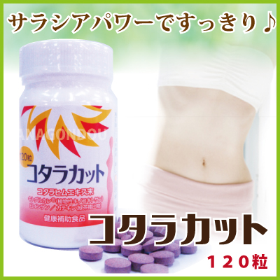 コタラカット サラシア(コタラヒム)配合。4つのパワーですっきり健康!【レビューで送料無料】[p10]