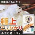 富山米こしひかりみやの穂