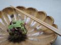 黄瀬戸菊皿メイン