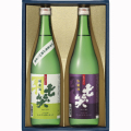 最高金賞2本セット 七笑 日本酒(ワイングラスでおいしい日本酒アワード 2021)