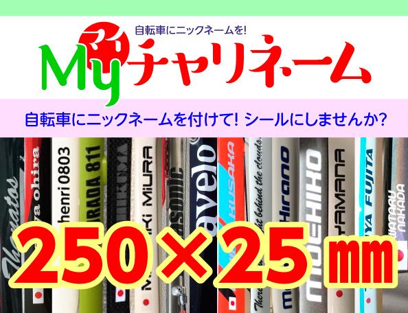 250×25ミリネームシール