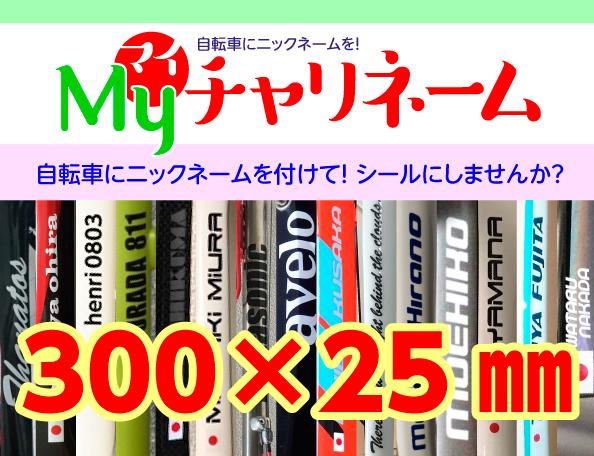 300×25ミリネームシール