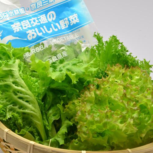 【送料込】まほろば水耕園の野菜 サラダセット【6袋セット】