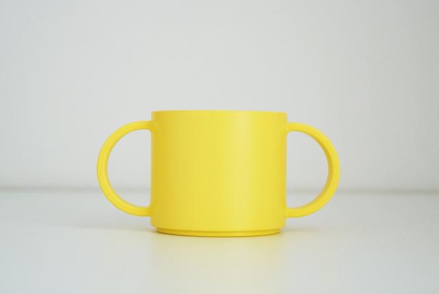 KIDS DISH mug