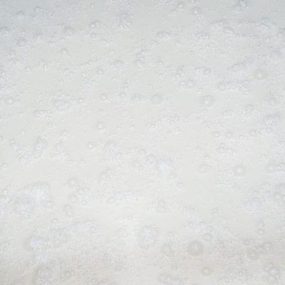 鳴門鯛 純米吟醸 U2FP55 夏にごり生