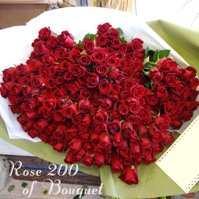 赤バラ花束 200本 お祝い花束 東京 二子玉川の花屋ネイティブフラワーイーダ