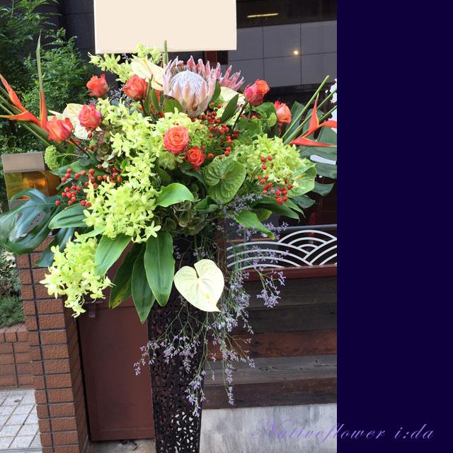 開店祝いに贈るスタンド花 キングプロテア グリーン ネイティブフラワー