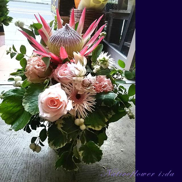楽屋花 アレンジメント ピンク キングプロテア ネイティブフラワーイーダ