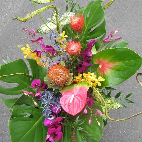 二子玉川の花屋 開店祝いアレンジ花 ピンクッションとビッグアンス