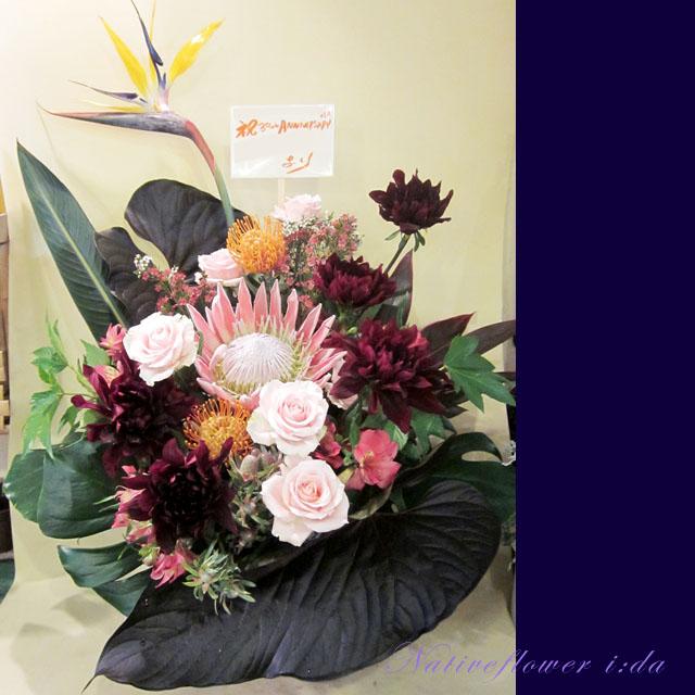 アレンジメント お祝い花