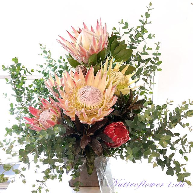 二子玉川の花屋ネイティブフラワーイーダ キングプロテア