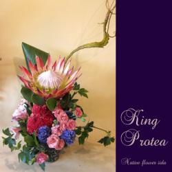 お祝いの花 大きめアレンジメント アレンジメント キングプロテア