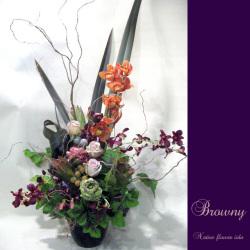 お祝いの花 大きめアレンジメント ブラウニー