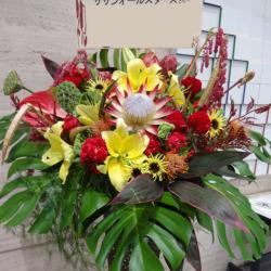 吉祥寺に贈るお祝いスタンド花 トロピカリア