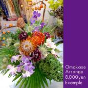 お祝い花 おまかせアレンジ8000 二子玉川の花屋ネイティブフラワーイーダ